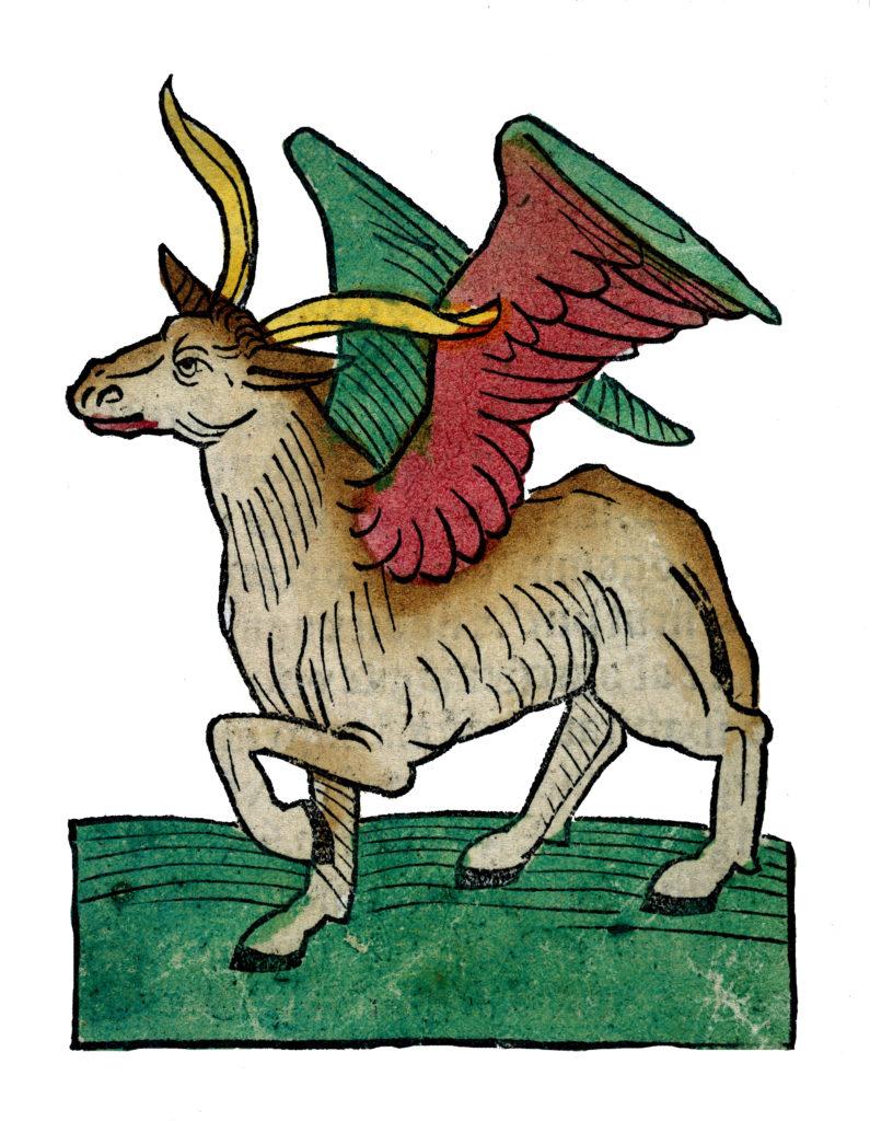 Medieval winged beast