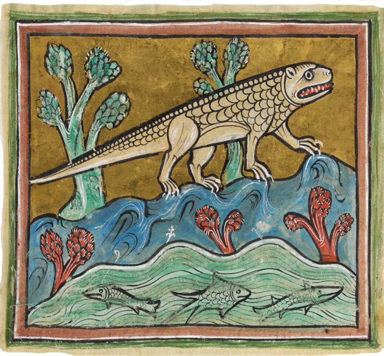 Medieval crocodile